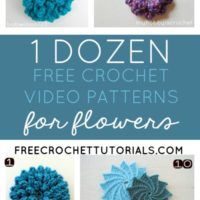 1 Dozen Video Crochet Flower Patterns