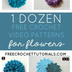 1 Dozen Free Crochet Video Patterns For Flowers FreeCrochetTutorials.com Collection