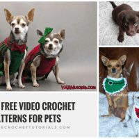 10 Free Video Crochet Patterns for Pets