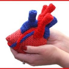 Anatomical Heart Amigurumi Video Tutorial