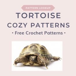 Lookup Tortoise Cozy Patterns 2