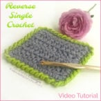 Learn To Crochet The Reverse Single Crochet Stitch