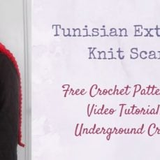 Tunisian Extended Knit Scarf Tutorial