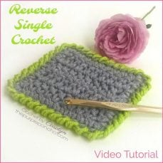 DIY Crochet Tutorial – Reverse Single Crochet Stitch